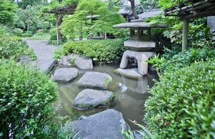 薬師の泉庭園の立ち燈籠と飛び石の写真素材 [FYI03844273]