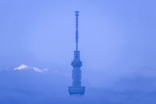 朝雲の中の東京スカイツリー先塔の写真素材 [FYI03844346]