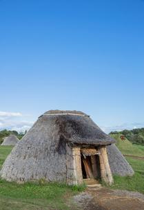 山内丸山遺跡の茅屋根竪穴住居の写真素材 [FYI03844376]