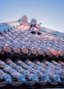 琉球村の赤瓦屋根上の魔除けシーサーの写真素材 [FYI03844409]