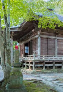 平泉中尊寺の峯薬師堂の写真素材 [FYI03844436]