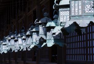 春日大社回廊の釣灯籠の写真素材 [FYI03844637]