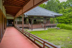 随心院の寝殿造本堂の廊下と庭園の写真素材 [FYI03844714]