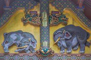 日光東照宮三神庫の想像の象の写真素材 [FYI03844783]
