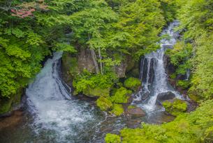 緑の中の竜頭ノ滝の写真素材 [FYI03844804]