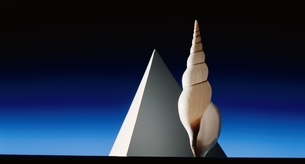 四角錘と貝の写真素材 [FYI03844881]