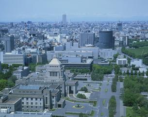 国会議事堂    東京都の写真素材 [FYI03845308]