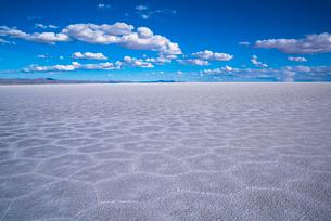 ウユニ塩湖の写真素材 [FYI03846080]
