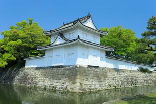 新緑の二条城 東南隅櫓の写真素材 [FYI03846566]