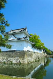 新緑の二条城 東南隅櫓の写真素材 [FYI03846568]