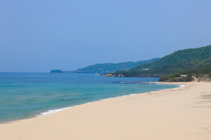琴引き浜 鳴き砂の写真素材 [FYI03846771]