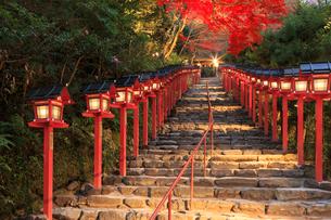 紅葉の貴船神社参道の写真素材 [FYI03846799]