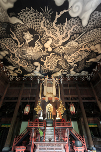 建仁寺法堂と双龍図の写真素材 [FYI03847054]