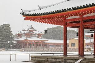 雪の平安神宮神楽殿から白虎楼を見るの写真素材 [FYI03847145]