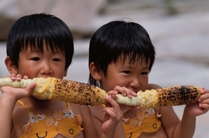焼きトウモロコシを食べる日本の男の子2人の写真素材 [FYI03847641]