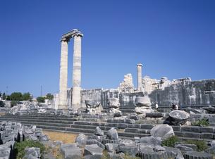 ディディム遺跡 クシャダス郊外 トルコの写真素材 [FYI03847717]