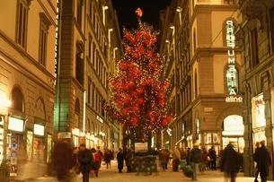 クリスマスのカルツァイウォーリ通り  フィレンツェ イタリアの写真素材 [FYI03848219]