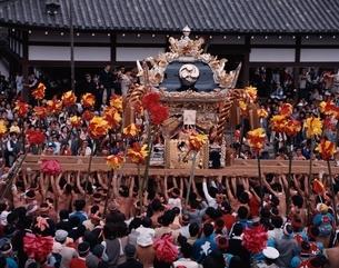 けんか祭りのみこしと群集 兵庫県の写真素材 [FYI03848277]
