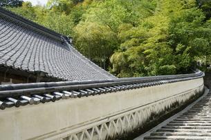長谷寺昭和寮土塀の写真素材 [FYI03848418]