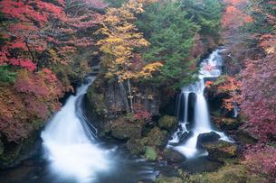 秋の日光 竜頭の滝の写真素材 [FYI03848533]