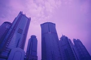 上海のビル群 中国の写真素材 [FYI03848579]