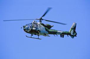 イギリス海兵隊ガゼルヘリコプターの写真素材 [FYI03848932]