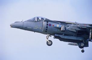 イギリス空軍ハリアーGR9垂直離着陸攻撃機の写真素材 [FYI03848988]