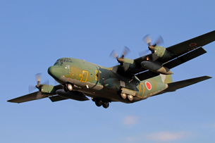 航空自衛隊ロッキードC-130輸送機の写真素材 [FYI03849055]