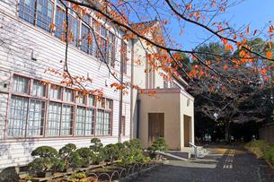 旧府中町立尋常高等小学校校舎の写真素材 [FYI03849395]