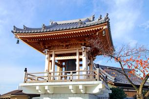 普済寺 の写真素材 [FYI03849417]