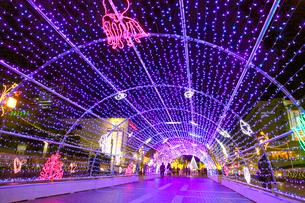 多摩センターのクリスマスイルミネーションの写真素材 [FYI03849499]
