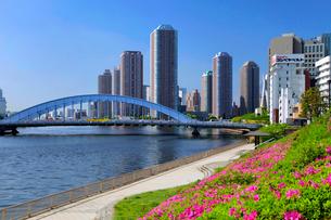 永代橋と大川端リバーシティー21の写真素材 [FYI03849572]