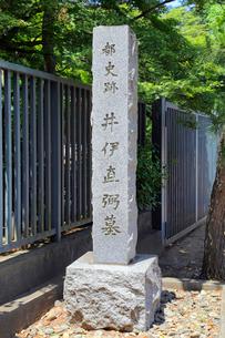 井伊直弼の墓の石柱の写真素材 [FYI03849629]
