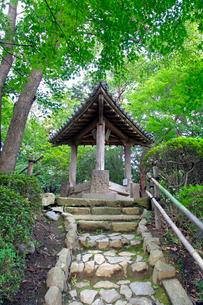 哲学堂公園 三学亭の写真素材 [FYI03849679]