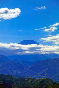 高尾山山頂より見る富士山の写真素材 [FYI03849704]