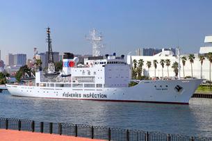 水産庁漁業取締船 東光丸の写真素材 [FYI03849722]