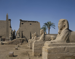 ルクソール神殿  エジプトの写真素材 [FYI03849749]