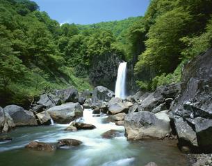 関川と苗名滝   新潟県の写真素材 [FYI03849771]