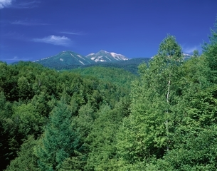 乗鞍岳   長野県の写真素材 [FYI03849835]