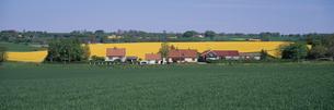 田園風景  スコーネ地方 スウェーデンの写真素材 [FYI03850370]