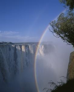 ビクトリア滝と虹 ジンバブエの写真素材 [FYI03850426]