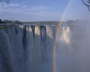 ビクトリア滝と虹  ジンバブエの写真素材 [FYI03850428]