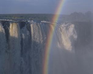 ビクトリアフォールズにかかる虹  ジンバブエの写真素材 [FYI03850429]