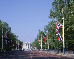 バッキンガム宮殿 ロンドン イギリスの写真素材 [FYI03850435]