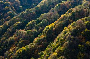 紅葉の山並みの写真素材 [FYI03850734]