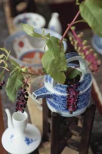 茶器に活けた実の付いた植物の写真素材 [FYI03850876]