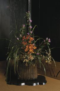 大きなカゴに生けられた花の写真素材 [FYI03850927]