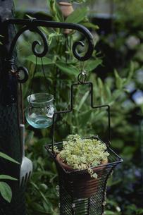 吊るされたガラス瓶と鉢の写真素材 [FYI03850935]