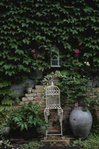 壁際の白い鳥かごの写真素材 [FYI03850941]