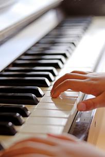 ピアノを弾く子どもの手の写真素材 [FYI03850978]